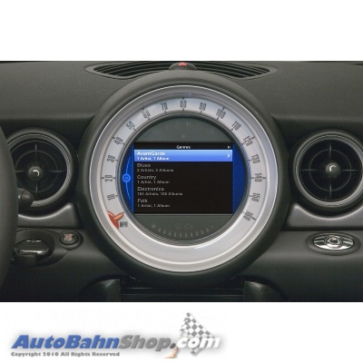 BMW iPhone iPod Out Display